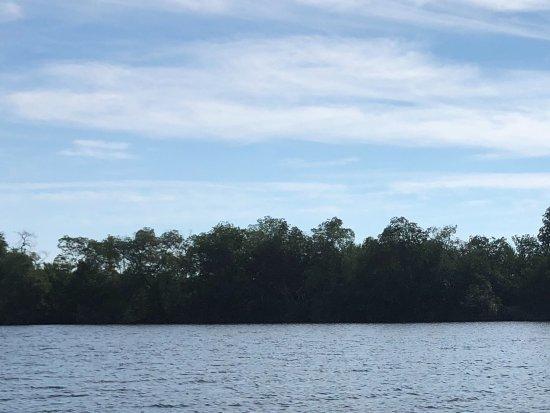 Tonala, Mexico: The lagoon.