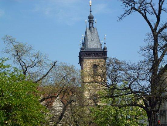 """New Town Hall : Сквозь """"облако"""" апрельской зелени"""