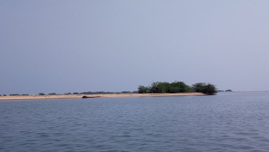 Pulicat Lake Nellore District - 2019 What to Know Before You