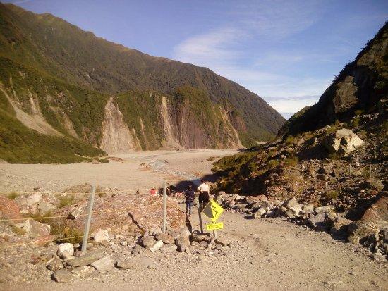 Fox Glacier Hiking Trails : Part of trail