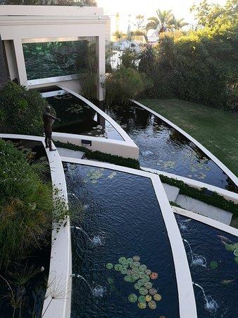 Бэнтри-Бей, Южная Африка: IMG_20180127_193054_large.jpg