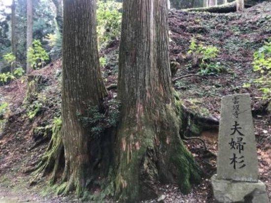 Unbenji Temple (三好市) - 評論 Unbenji Temple