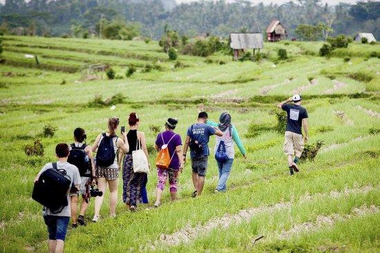 Sidemen, Indonezja: Trekking in the rice fields