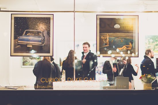 Curious Duke Gallery