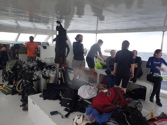 Island Divers: Before the dive/snorkel