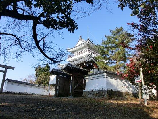 Ono Castle Ruins