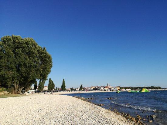 Strand Mit Fazana Stadt Im Hintergrund Picture Of Fazana Beach