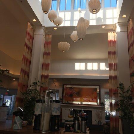 Hilton Garden Inn Tallahassee Central : Lobby