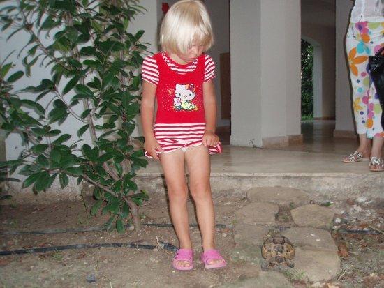Cornelia De Luxe Resort: Черепаха