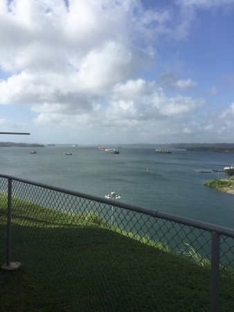 Manakin Adventures Panama: Ships waiting to pass through the locks on the canal