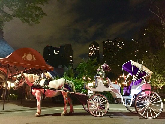 Official Central Park Horse and Carriage Rides