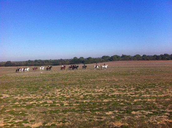Bollullos de la Mitacion, สเปน: Rutas guiadas a caballo