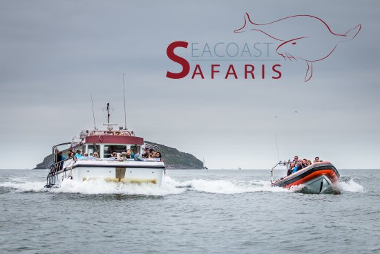 ‪Seacoast Safaris‬