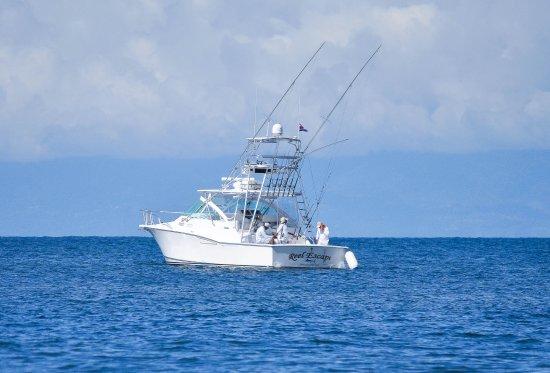 Drake Bay, Kosta Rika: Reel Escape