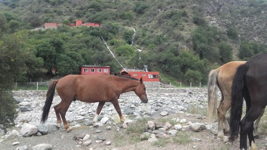 Nogolí, Argentina: Camino al hotel