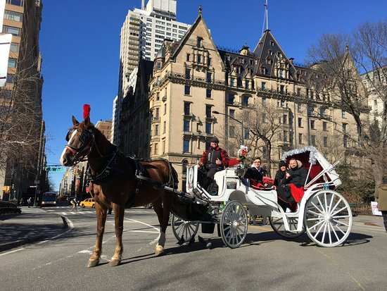 central park carriage ride jan 2018 picture of nyc horse carriage rides new york city. Black Bedroom Furniture Sets. Home Design Ideas