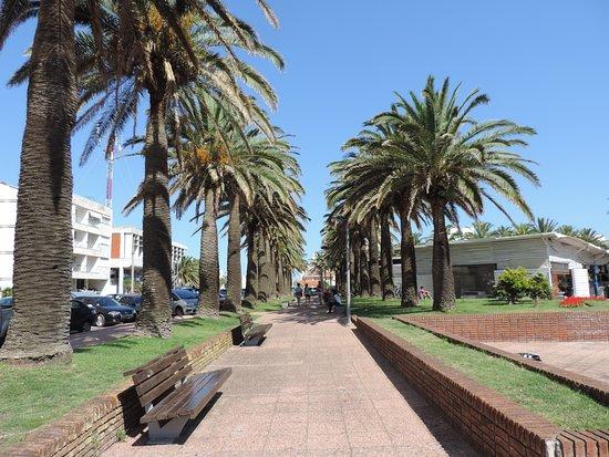 Plaza Gral Artigas