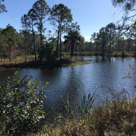 Canal Point, FL: photo8.jpg