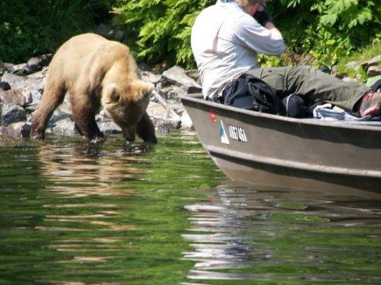 Kaktovik, Αλάσκα: Fishing side by side