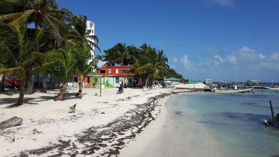 Caye Caulker, Belize: 20180122_111231_large.jpg