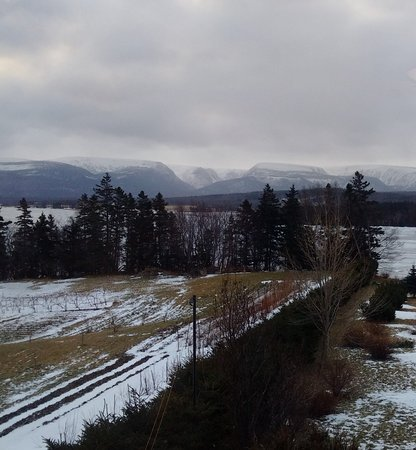 Doyles, Canada: View from Pitcher Plant Room in January