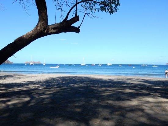 Hotel Bosque del Mar Playa Hermosa: View from shady beach