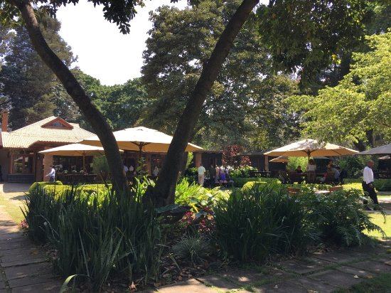 Arusha Coffee Lodge : The beautiful gardens where we had lunch