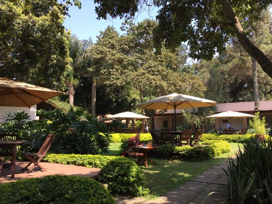 Arusha Coffee Lodge : Lovely setting for lunch