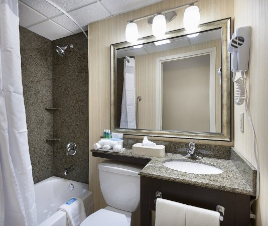 Holiday Inn Express & Suites Atlanta Downtown: Guest room amenity