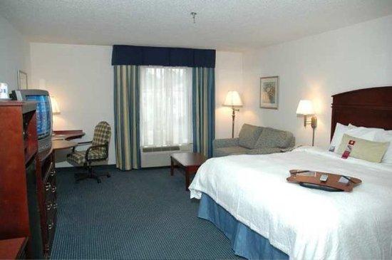 Hinesville, GA: Guest room