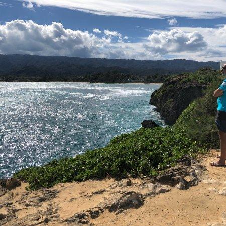 Aloha Private Tours: photo0.jpg