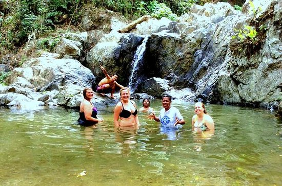 Sabeto Valley Full-Day Waterfall and...