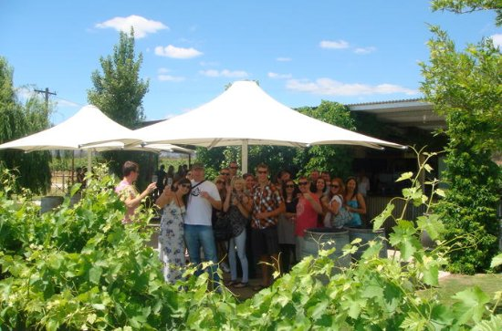 Swan Valley Winery Experience - Full...