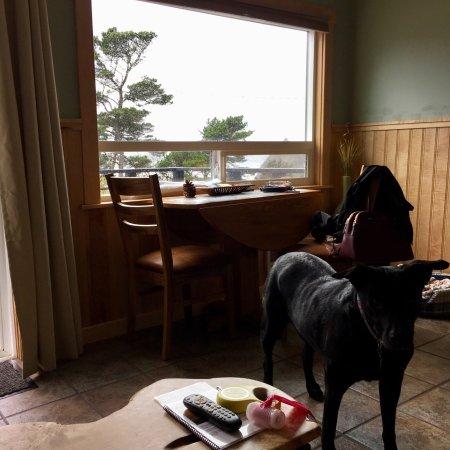 Agate Beach Motel: photo1.jpg