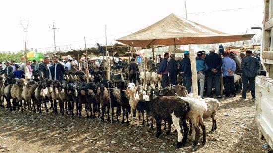 Kashi, China: Kashgar Livestock Market
