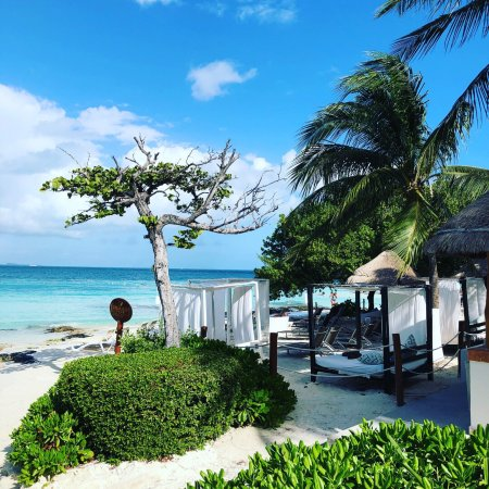 dreams sands cancun resort spa christmas in cancun december 2017