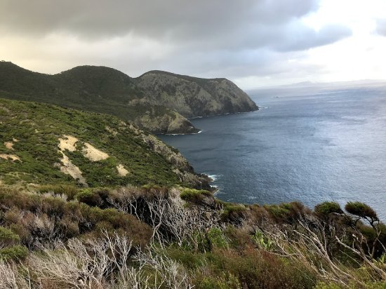 Rawhiti, New Zealand: Cape Brett walking track