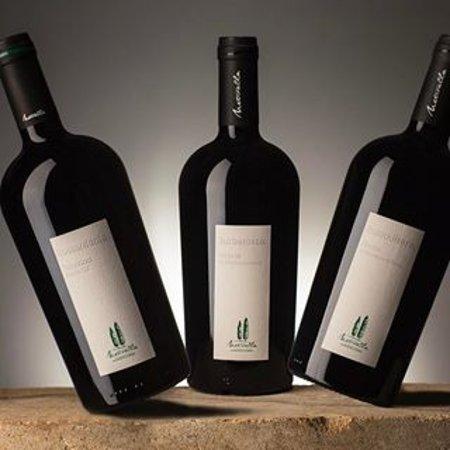 Vino Nobile di Montepulciano Burberosso