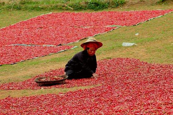 Kalaw, Myanmar: www.polestartravelmyanmar.com