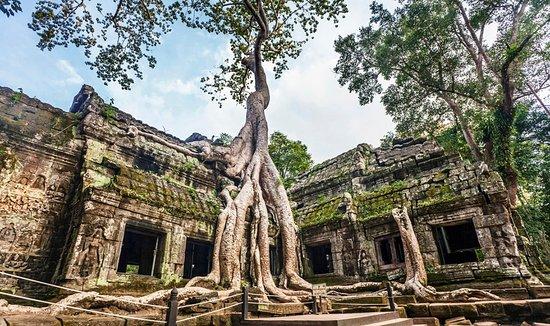 Hello Angkor Drivers