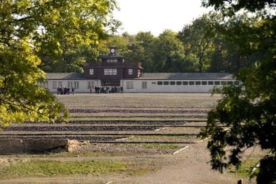 A Collection of 11 Photographs Taken in Nazi Bergen-Belsen
