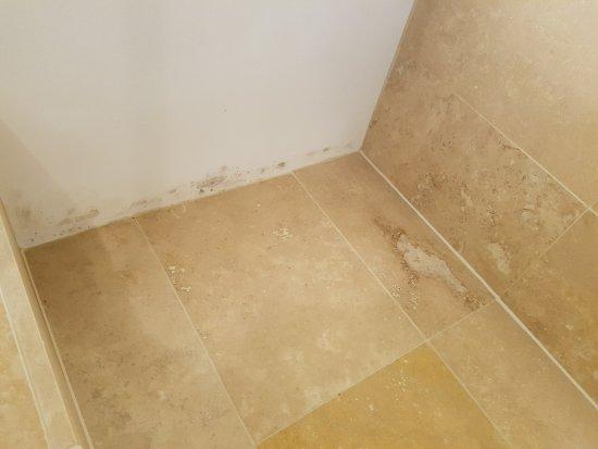 Hintlesham, UK: Mouldy Bathroom
