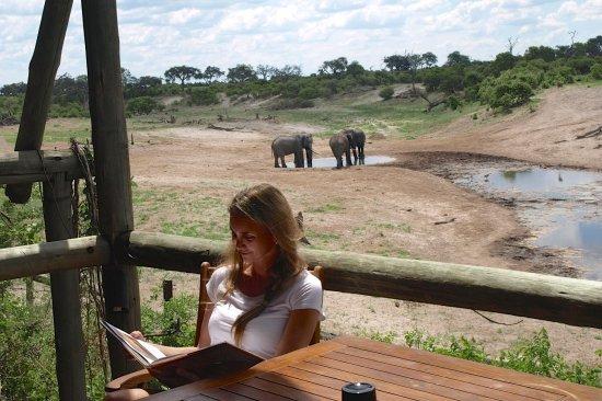 Savute Safari Lodge: Balcón de la habitación