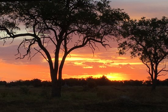 Savute Safari Lodge: Atardecer