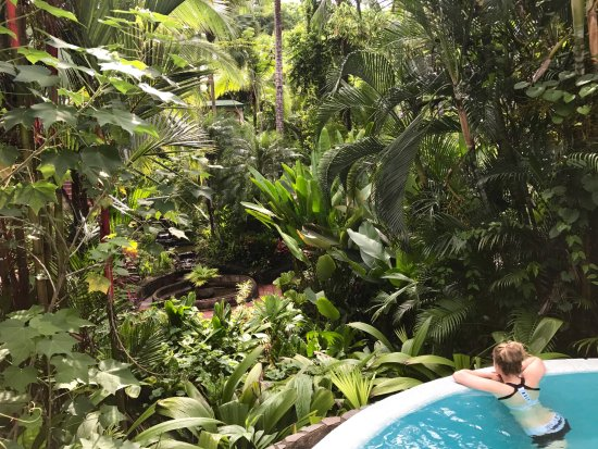 Falls Resort at Manuel Antonio: Falls resort