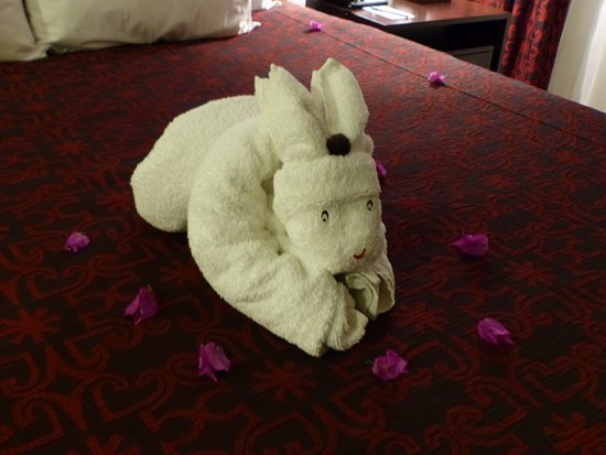 Welk Resorts Sirena Del Mar: Another towel sculpture from our housekeeper