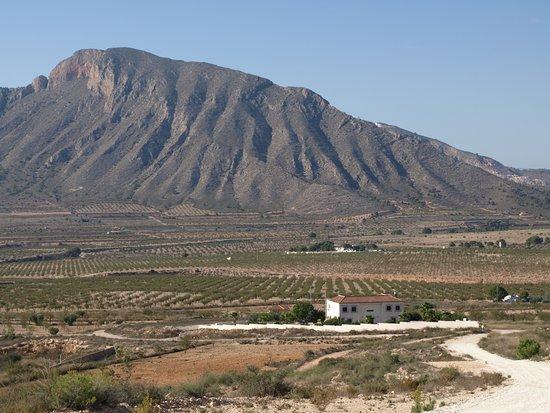 Barbarroja, España: La Casa Blanca set in the valley