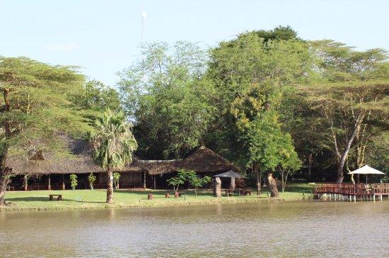 Voyager Ziwani, Tsavo West: IMG_3017_large.jpg