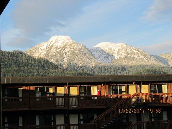 Driftwood Hotel Photo