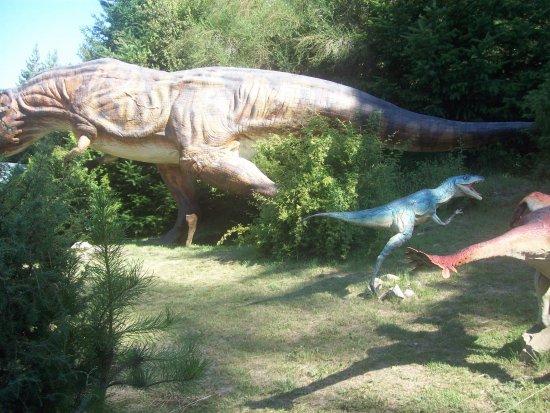 Replicas De Dinosaurios En Tamano Real Fotografia De Parque Nahuelito San Carlos De Bariloche Tripadvisor Todas las noticias sobre dinosaurios publicadas en el país. replicas de dinosaurios en tamano real